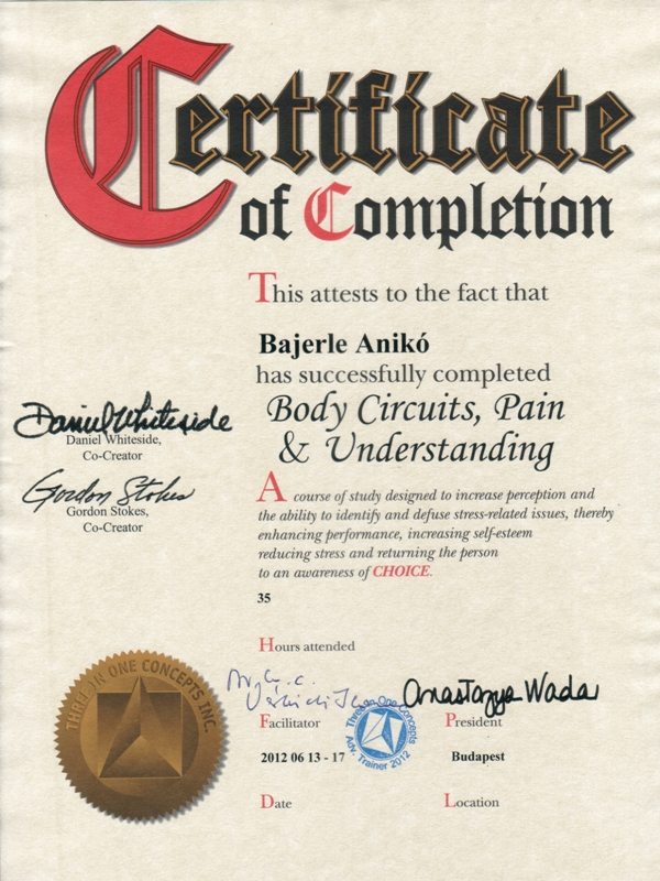 Testáramkörök, Fájdalom és Megértés - Kineziológiai tanfolyam